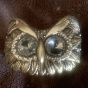 Fossil Bronze OWL With Crystal Eyes Bangle Cuff
